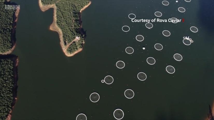 lac_mantasoa_vue_de_drone_rova_caviar