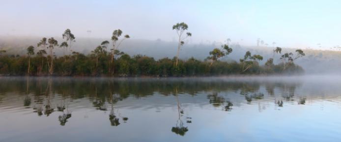 Lac Mantasoa Acipenser