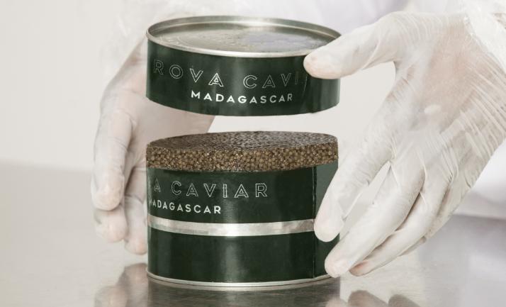 Rova Caviar Madagascar Production
