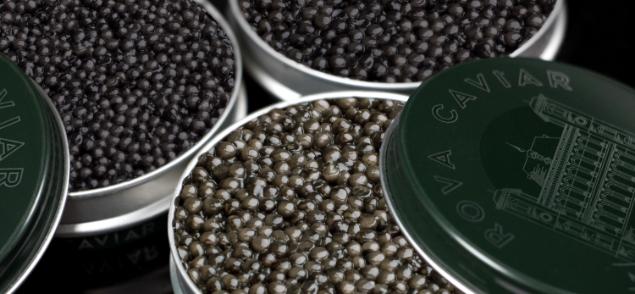 Rova Caviar Royal Impérial Suprême
