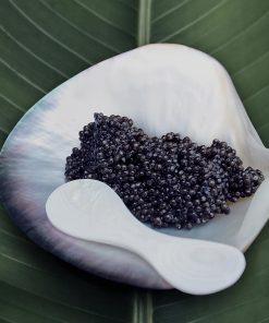 Coupelle Nacre Rova Caviar